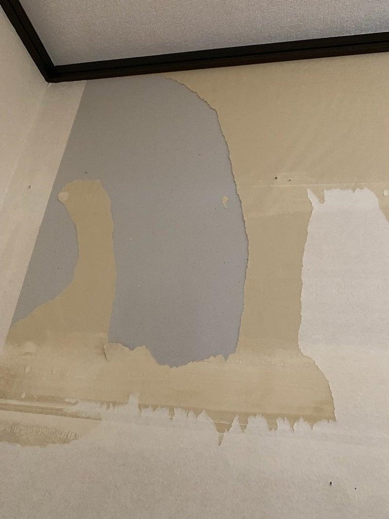 サロンづくり 壁紙で迷宮入り Shakara09のブログ