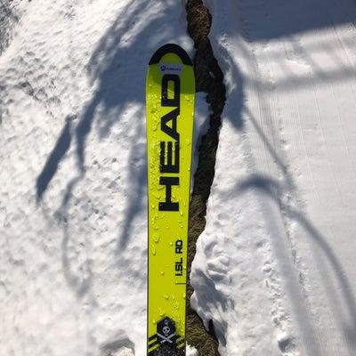 スキー試乗会 2の記事に添付されている画像