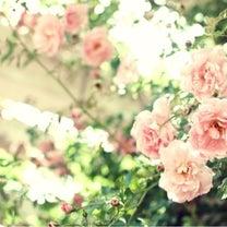 募集♡4月11日大阪、お茶会♡!の記事に添付されている画像