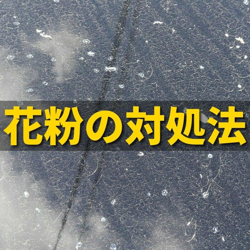 【保存版】困った春の車汚れ!花粉汚れの対処方法