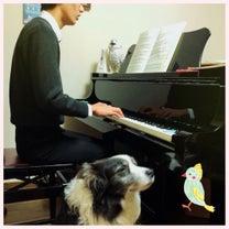 息抜きにピアノをの記事に添付されている画像