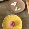 最近の本町店コーディネート&はこにわ@阪神です!の画像