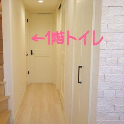 【web内覧会】1階トイレ~成功したスイッチと失敗した窓~の記事に添付されている画像