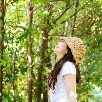【限定6名募集】GW三船智美と行く沖縄HULAリトリート☆の記事に添付されている画像