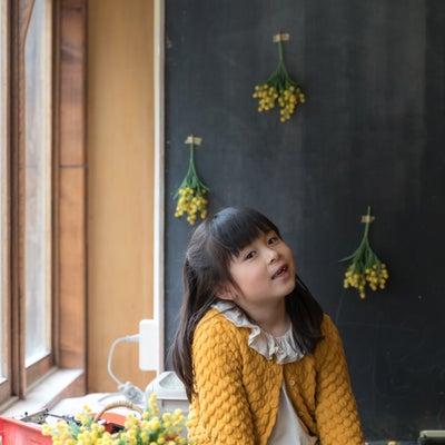 【募集中】アンティークカフェでミモザ撮影会の記事に添付されている画像
