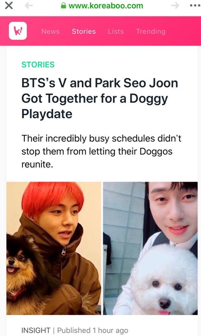 BTSのVとPark Seo Joonが一緒に犬を連れてデート