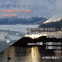 白鳥の湖写真展127の記事に添付されている画像