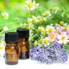 3・4月のアロマ情報 ユーカリを使ったおすすめ精油ブレンド~つらい花粉症にもの記事より