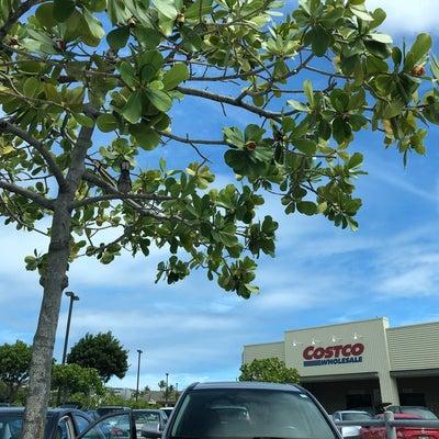 ハワイのcostcoの記事に添付されている画像