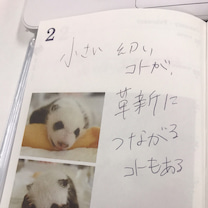 花崎阿弓ポエム⑥の記事に添付されている画像