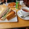 喫茶店でトーストサンドイッチランチ@ホルトの木の画像