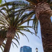 palm treesの記事に添付されている画像