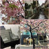 ひな祭り 三色蕎麦と昭島とお鮨なイチニチの記事に添付されている画像