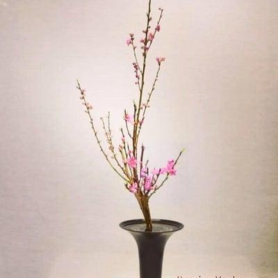 上巳の節句に~桃をいける【いけばな池坊】の記事に添付されている画像