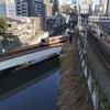 文京区の風景の画像