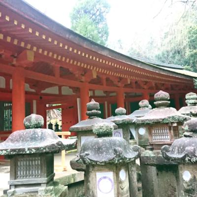 春日大社(奈良市)へ行ってきました。その2 ~朱色の美しい本殿とたくさんの灯籠との記事に添付されている画像