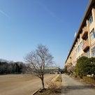 由木中学校の学校公開に行ってきましたの記事より