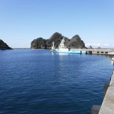 2019.3.5(火)田子港まったり釣行の記事に添付されている画像