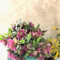久しぶりの花市場の記事に添付されている画像
