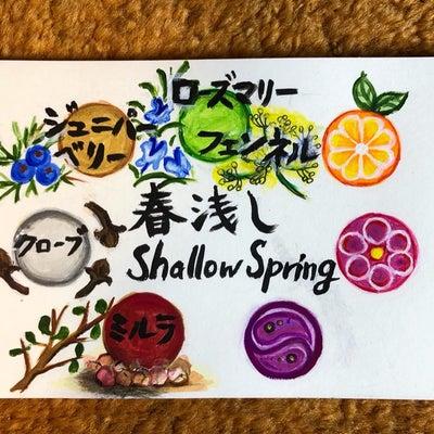 3/1アロマヨガ「春浅し Shallow Spring 」の記事に添付されている画像