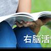 【英語勉強中】ビジネス英語は「借り物の英語」で済まさないこと!の画像