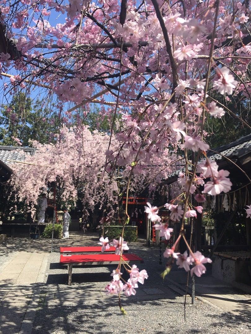 3月24日発 くらぶベルテンポさんの奈良・京都の旅の記事より