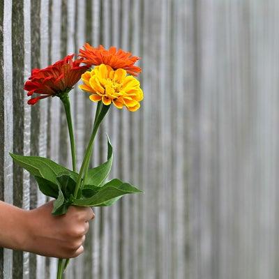 恩恵を受け取ってください✨の記事に添付されている画像