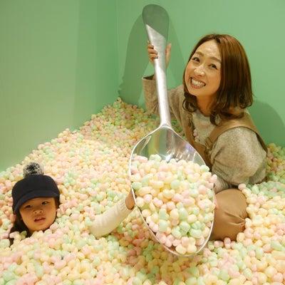 シリアルプール ビニールミュージアム 名古屋 ららぽーとの記事に添付されている画像