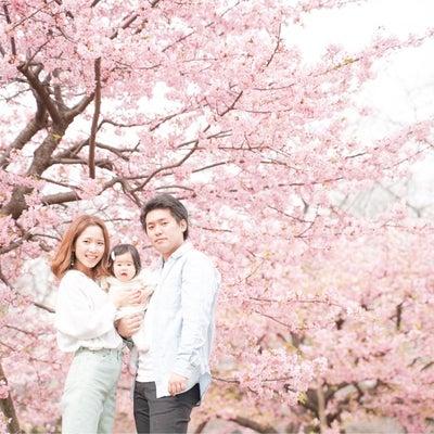 【開催レポ】河津桜撮影会@代々木公園の記事に添付されている画像