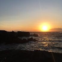 ヤリイカ釣行@三浦半島の記事に添付されている画像