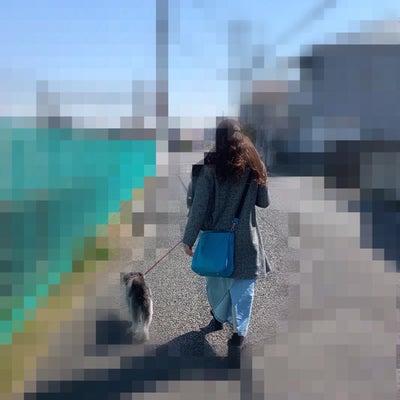 お散歩♪の記事に添付されている画像