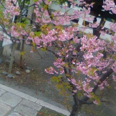 2019年3月10日「鎌倉宮骨董市」開催中に行って来ました。戸塚 アンティークシの記事に添付されている画像