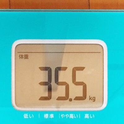 体重推移。の記事に添付されている画像