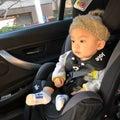 ふるさと納税♡愛知県犬山市のチャイルドシート!!!の画像