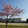 吉川市の学童保育の画像