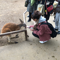 えりぼん部イベント エリボン&アッキと富士サファリパークに行こう!ガオ!partの記事に添付されている画像