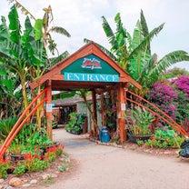 ここは東南アジア⁉Blue Lotus Water Gardensの記事に添付されている画像