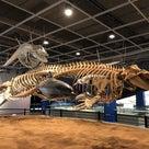 長生捕鯨博物館 蔚山2の記事より