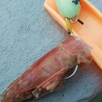 アルゼンチンアカエビの頭の使い方の写真の記事に添付されている画像