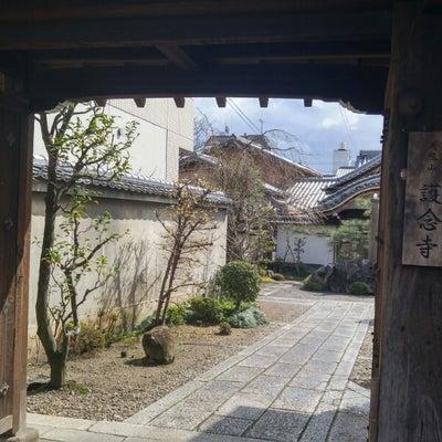 京都市 護念寺の記事に添付されている画像