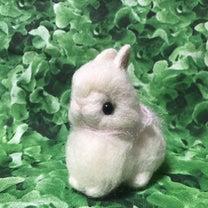うさフェスタに連れて行く羊毛うさぎドール 限定サイズ ⑳の記事に添付されている画像