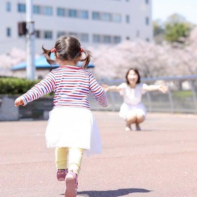 桜のお写真撮影会♪とってもお得なイベントなので…の記事に添付されている画像