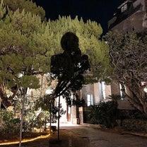・「邸宅レストラン ル・アン」兵庫県 重要文化財の邸宅フレンチレストランの記事に添付されている画像