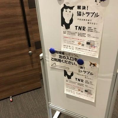 ねりまねこさん主催【猫のシンポジウム】に行って来ました@練馬の記事に添付されている画像