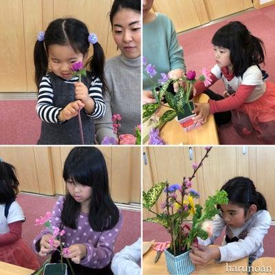 ひな祭りこどもお花遊び(レッスンレポ)の記事に添付されている画像