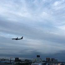 デルタ・プレミアムセレクトで日本へ☆の記事に添付されている画像