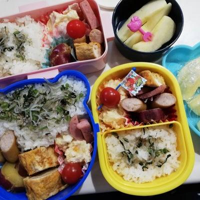 幼稚園参観日とお弁当の記事に添付されている画像