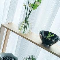 スノーフレークの花束の記事に添付されている画像