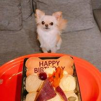 4歳の誕生日の記事に添付されている画像