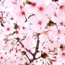 春のインテリはこんな風にの記事に添付されている画像